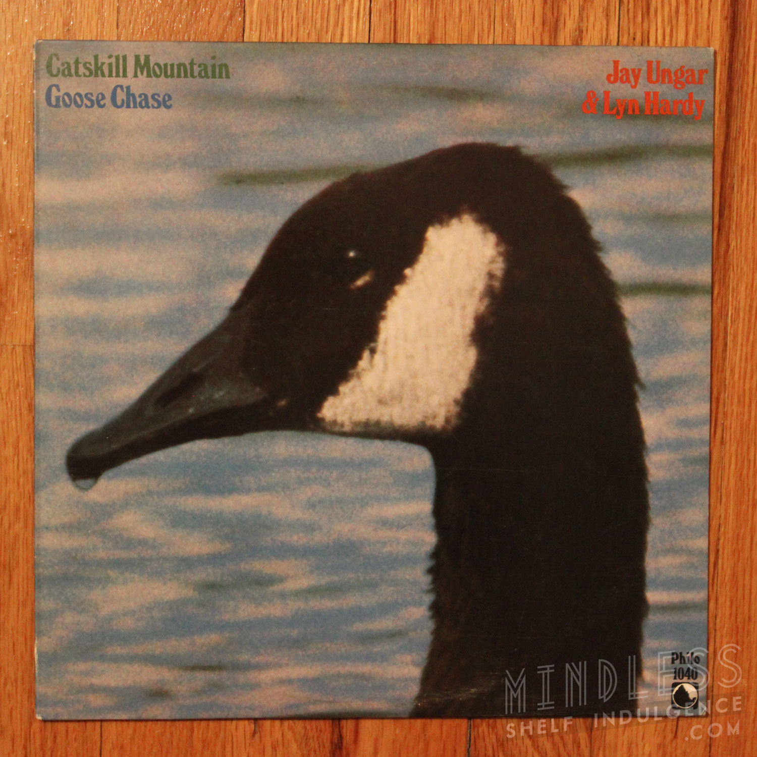 catskill_mountain_goose_chase_LP